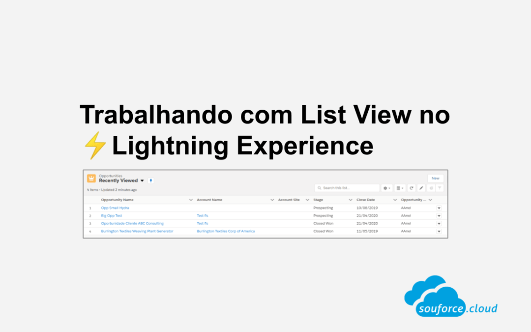 Trabalhando com List View no Lightning Experience